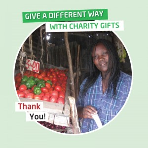 Karibni charity gofts - Initial set-up loans for a child's carer to start a business