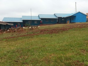 3 New Classrooms